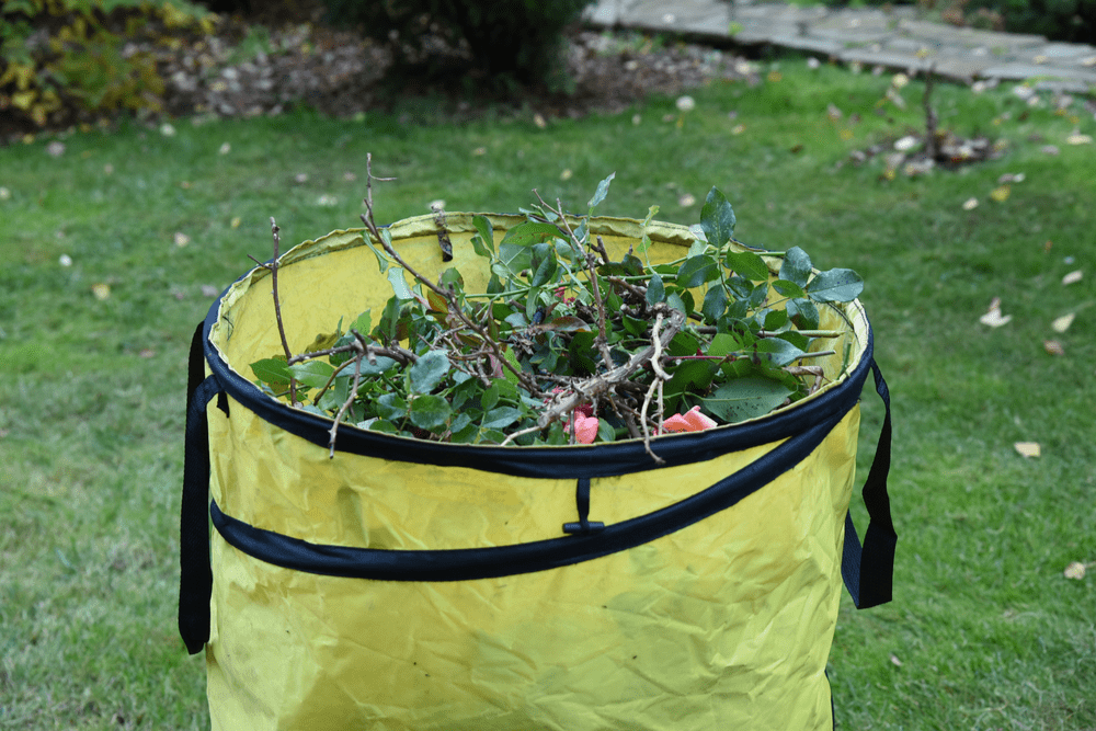 ryan colson garden clearance